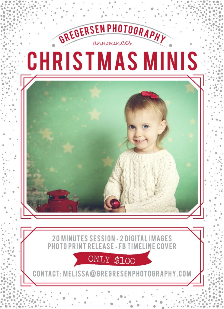 Kalamazoo Christmas Mini Photography Sessions Gregersen Photography